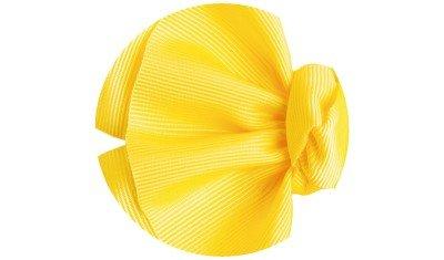 laco lirio amarelo descricao
